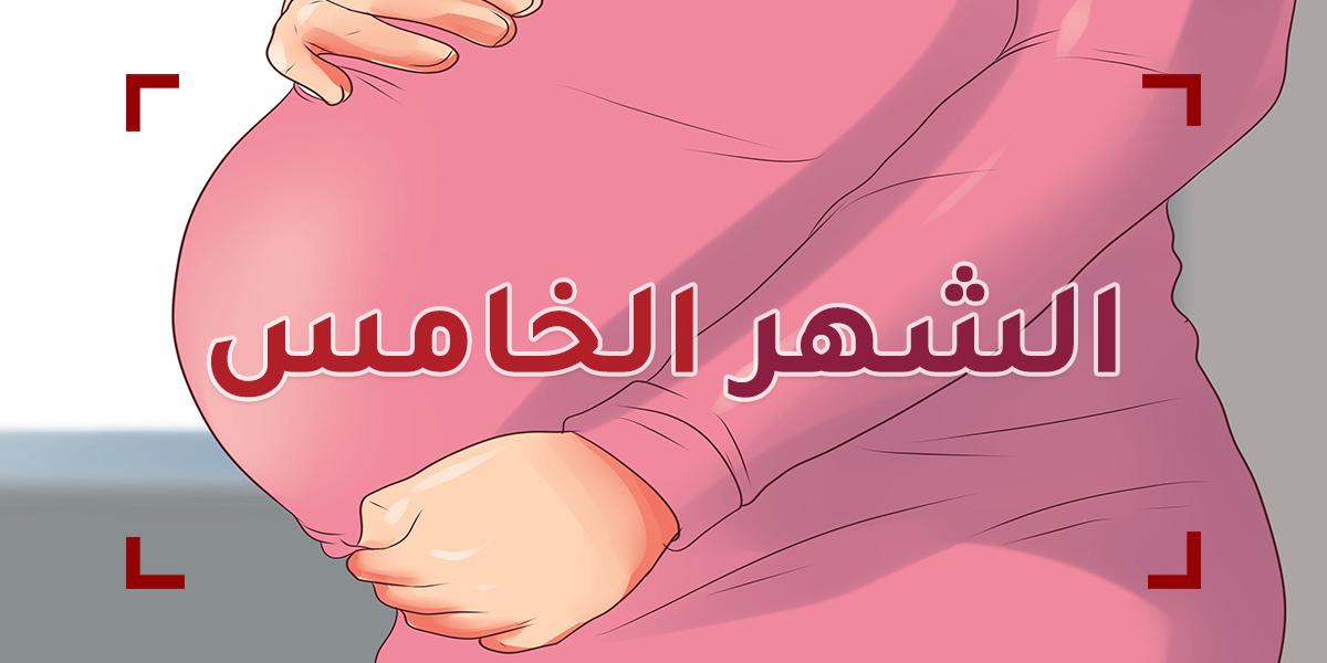 الحمل في الشهر الخامس