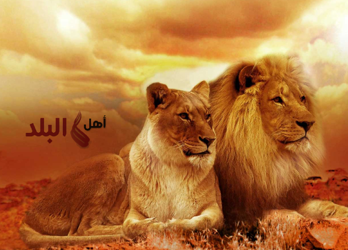 توقعات الأبراج اليوم الثلاثاء 18 اغسطس/أب 2020 منيب الشيخ | توقعات يومية