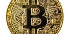 أنواع محافظ البيتكوين Bitcoin wallet